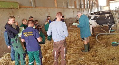 Mutterkuh und Milchvieh: Prüfungsvorbereitung für Azubis in Harzungen undOldisleben